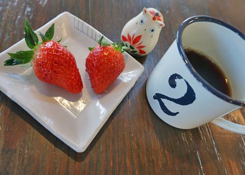 ねこと言えばミルクでしょうが、ゆーあの招きねこは珈琲です↑。