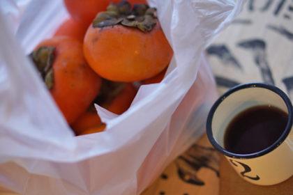 例年より遅めの富有柿