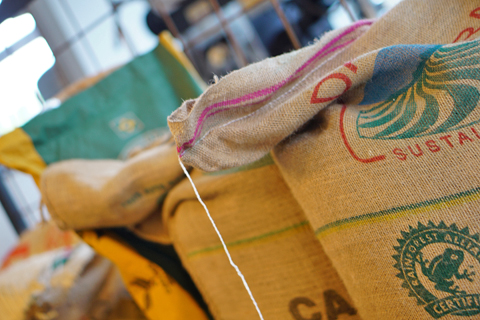 ダテーラ農園の珈琲生豆