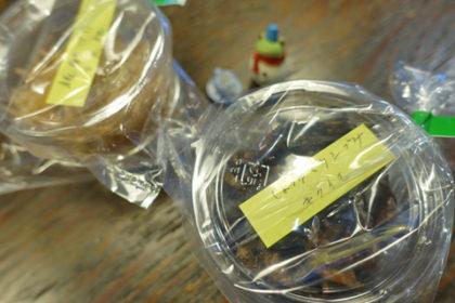 菊芋の醤油漬け