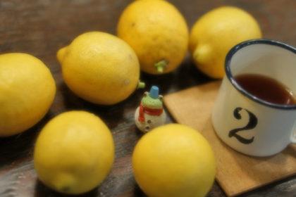 ワタジュンの檸檬